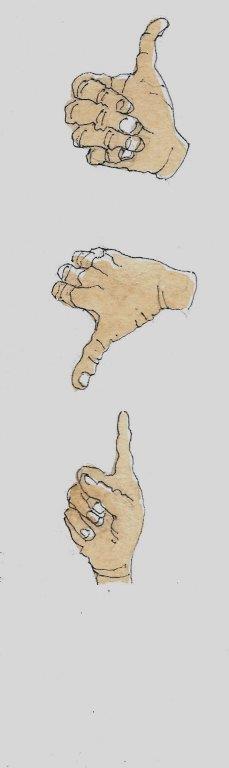 חן_נרדי_6_אצבעות