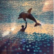 המודל הדולפיני